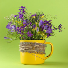 Beautiful bouquet of wildflowers in cup on green background