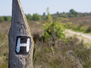 Heidschnuckenweg - Wegemarkierung H