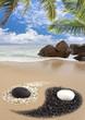 plage yin yang aux Seychelles