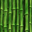 Lush green bamboo stalks - seamless texture