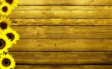 girasoli su legno