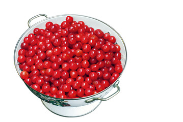 Fresh Cherries in Colander on White