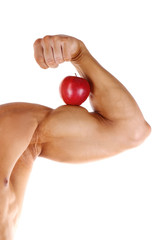 sport strength biceps
