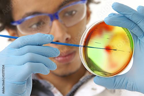 Manipulation de Microbiologie