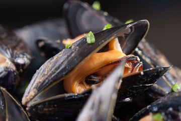 Single steamed mussel close-up
