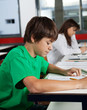 Schoolboy Studying At Desk In Classroom