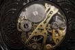 Watch gears very close up - 53723125