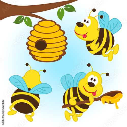 bees around a hive