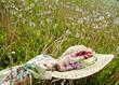 Strohhut auf Pusteblumen-Wiese