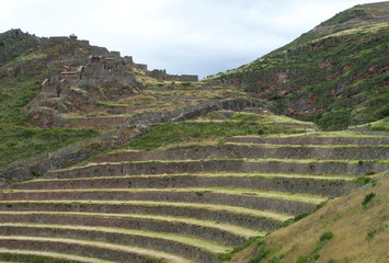 Typical terraces of the Incas in Peru