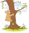 Bär klettert am Baum