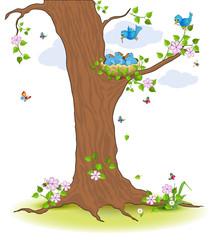 Fütterung Vogelnest im Baum