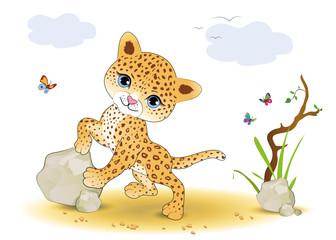 Jaguarbaby