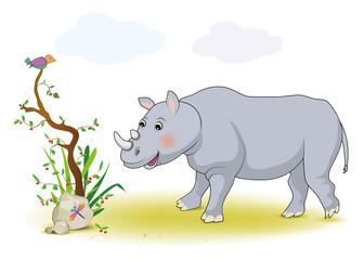 Nashornbaby