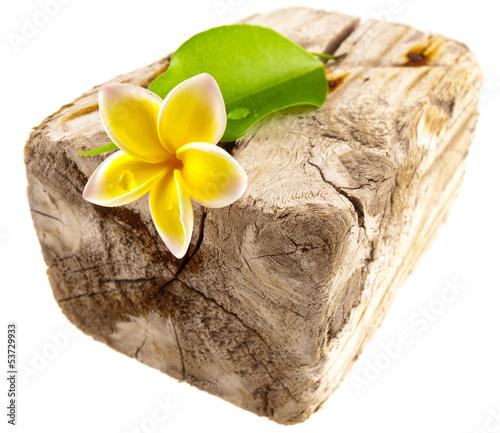 fleur et feuille sur bois flotté