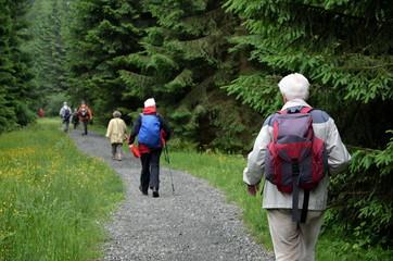 Senioren wandern