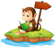 A monkey reading a book in an island
