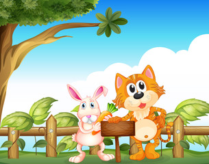 A cat and a rabbit near the empty wooden signboard