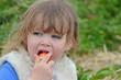 dévorer une fraise