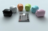 Calculator and Piggy Bank - 53741560