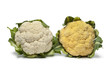 Fresh yellow and white Cauliflower