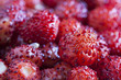 Wild strawberries macro shot