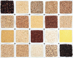 Grain Sampler