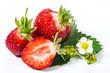 Sommer-Schönheiten: Frisch gepflückte Erdbeeren