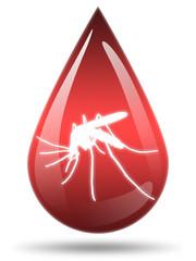 Ilustração - Doenças provocadas por picadas de mosquito