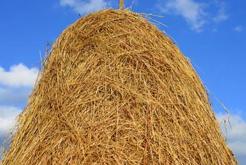 A haystack.