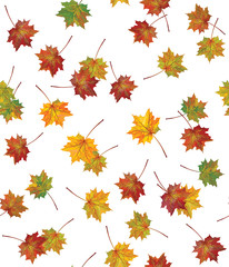 Vector seamless background of autumnal leaves.