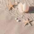 Urlaubserinnerungen, Stillleben mit Seesternen, Strand