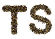 The alphabet from green tea with herbs