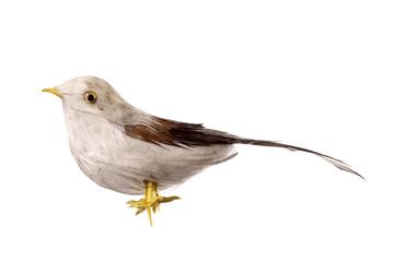 Unreal bird