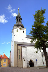 St Mary's Cathedral. Tallinn, Estonia