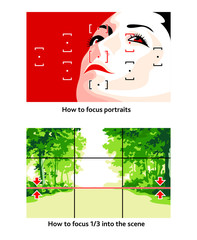 Camera focusing tips for portraits and landscapes