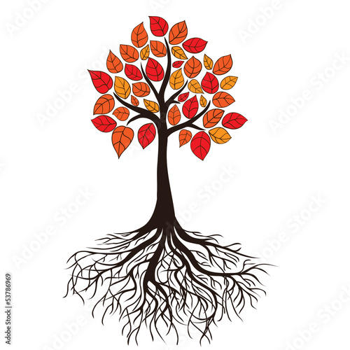 Autumn tree with roots. Vector
