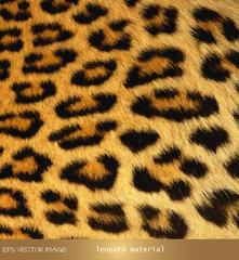 eps Vector image:leopard material