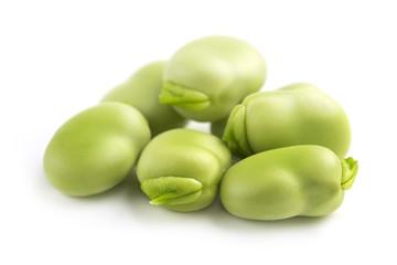 pile of fava beans
