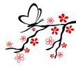 Zweig Blüten Schmetterling