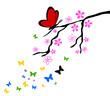 Zweig Blüten Schmetterlinge