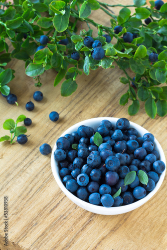 Bunch of fresh blueberry in the white bowl on wooden background