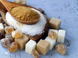 canvas print picture - Various kinds of sugar, brown, white and refined sugar