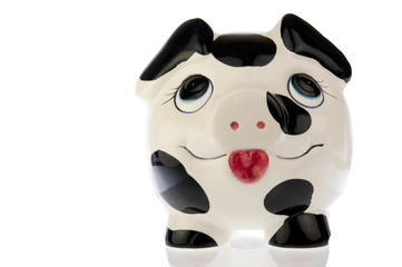 Pig with happy face in white