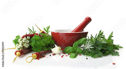 Red porcelain mortar and pestle with fresh herbs - 53826947