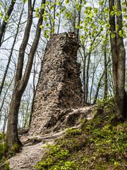 Hamrstejn ruin