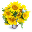 Bouquet of sunflowers are on a white background
