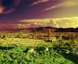 paisaje rural,puesta de sol y campos de cultivo
