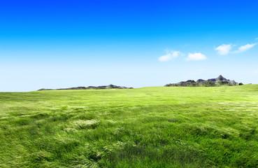 Paisaje,praderas verdes y montañas
