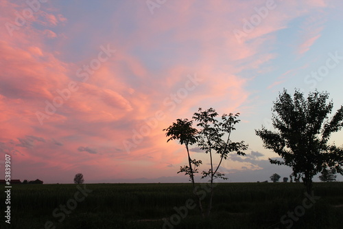 Campagna al tramonto (3)